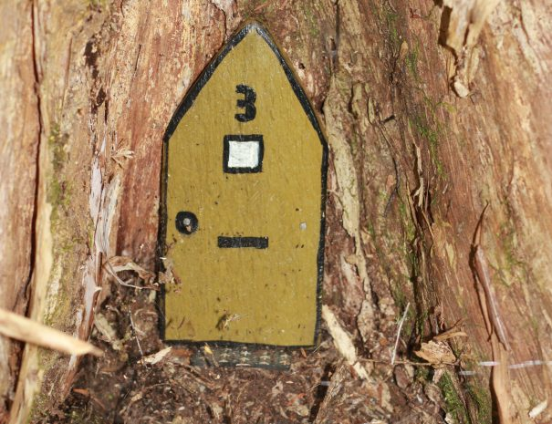 fairy door number 3